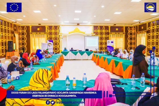 Sonsaf holds training for women's wing of national parties